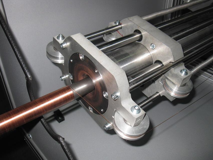 KupferbandwicklerTaenzer